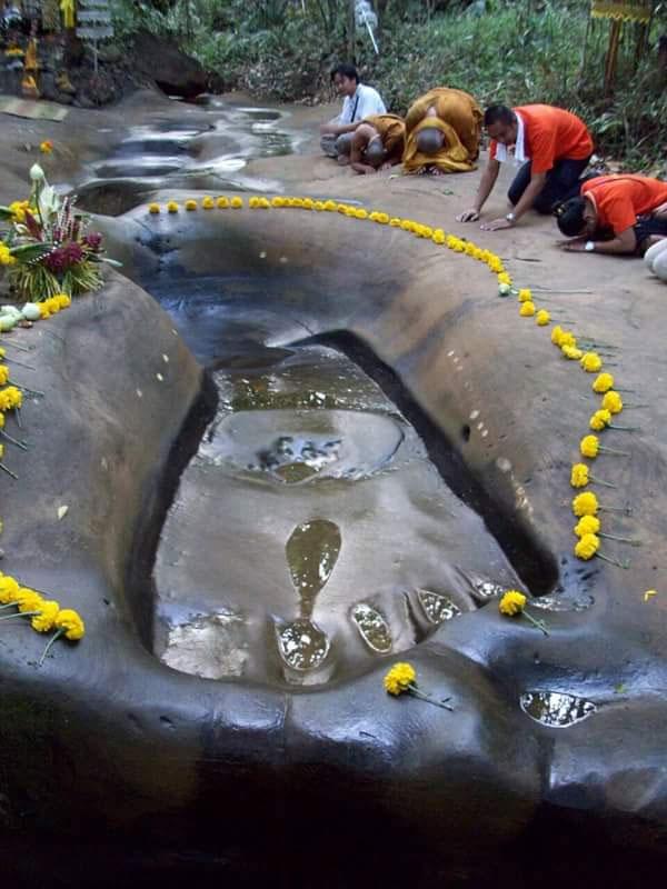 giant footprint 5