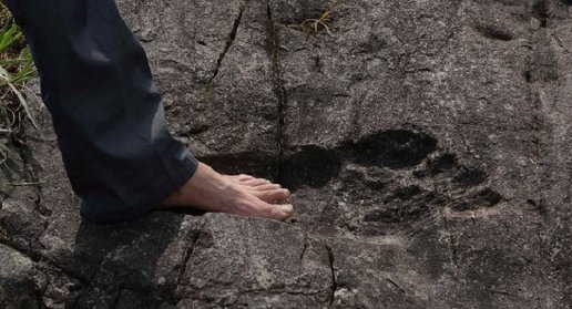 giant footprint