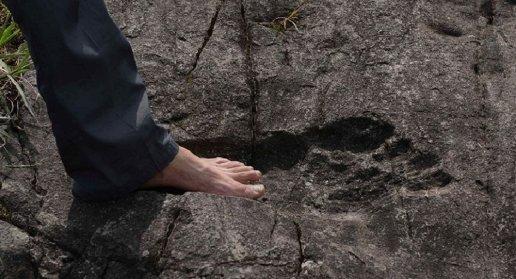 giant footprint